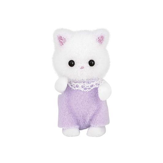 波斯貓嬰兒 - 5