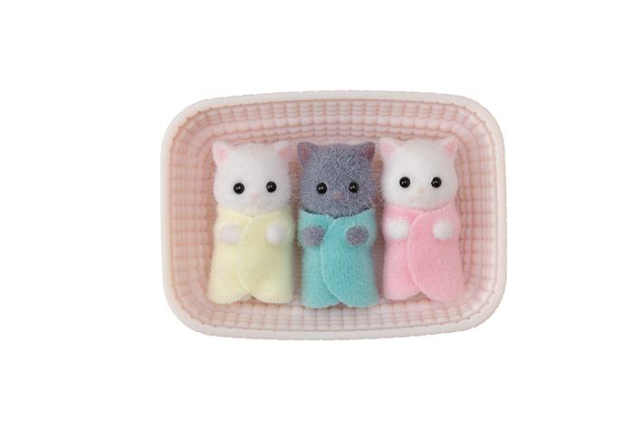 波斯貓三胞胎 - 3