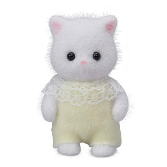 Baby Perzische kat - 5
