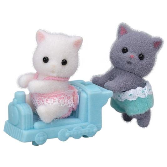 Les jumeaux chat persan - 4