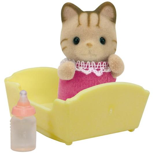 Le bébé chat tigré - 4