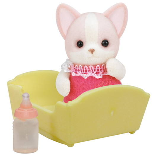 Le bébé chihuahua - 4